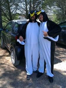la visite des pingouins à aix